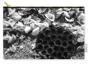 Water Lotus And Shells In Bw Carry-all Pouch