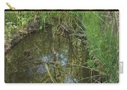 Water Pond Reflection In Peters Canyon Carry-all Pouch