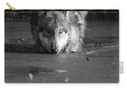 Water Wolf I Carry-all Pouch
