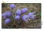 Watercolor Pasque Flowers Carry-all Pouch
