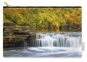 Waterfall Glen, Lemont, Il Carry-all Pouch
