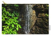 Waterfall In Forest Carry-all Pouch by Elena Elisseeva