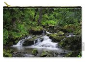 Waterfall Medley Carry-all Pouch