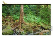 Waterfalls And Banyans Carry-all Pouch