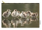 We Are Family - Seven Egytean Goslings In A Row Carry-all Pouch