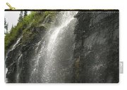 Weeping Wall Carry-all Pouch by Diane Greco-Lesser