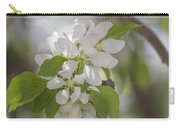 Welcoming Spring - 2  Carry-all Pouch