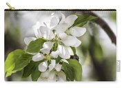 Welcoming Spring Carry-all Pouch