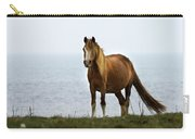 Welsh Pony  Carry-all Pouch