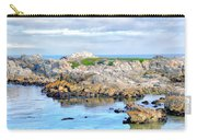 West Coast Seascape 3 Carry-all Pouch