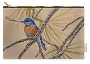 Western Bluebird Male In A Pine Tree.  Carry-all Pouch