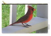 Western Cardinal Carry-all Pouch