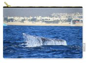 Whale Tail In Cabo Carry-all Pouch