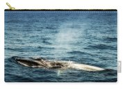 Whale Watching Balenottera Comune 5 Carry-all Pouch