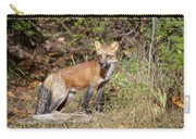 What Does The Fox Say Carry-all Pouch
