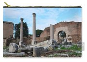 Basilica Aemilia Carry-all Pouch
