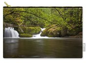 Whatcom Creek Gorge Carry-all Pouch