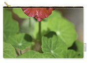 Whirleybird Nasturtium Carry-all Pouch