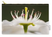 White Cherry Blossom Against Green Carry-all Pouch