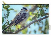 White-crowned Sparrow 0033-111017-1cr Carry-all Pouch