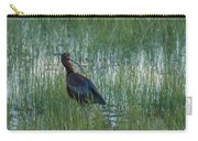White-faced Ibis In Idaho Carry-all Pouch