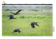 White-faced Ibis Rising, No. 3 Carry-all Pouch