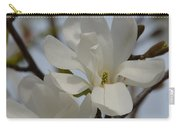 White Magnolia Blooming In Spring Carry-all Pouch