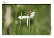 White Plume Moth, Carry-all Pouch
