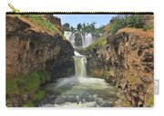 White River Falls B Carry-all Pouch