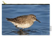 White-rumped Sandpiper Carry-all Pouch