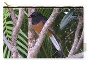 White Rumped Shama Carry-all Pouch