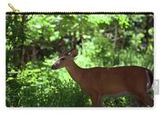 White Tailed Buck Carry-all Pouch