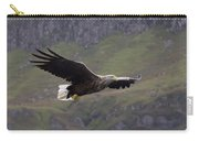 White-tailed Eagle Approaches Carry-all Pouch