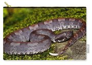 White-tailed Hognose Viper Carry-all Pouch