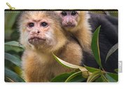 White-throated Capuchin Monkeys Cebus Carry-all Pouch