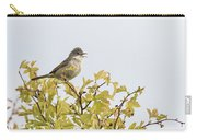 Whitethroat  Carry-all Pouch