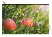 Wild Beautiful Telopea Flower In Sunset Light  Carry-all Pouch