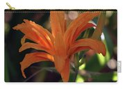 Wild Daylilies 1167 H_2 Carry-all Pouch