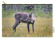 Wild Finnish Forest Reindeer 24 Carry-all Pouch
