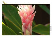Wild Ginger II Carry-all Pouch