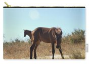Wild Horses Desert Of Mexico Carry-all Pouch
