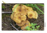 Wild Mushrooms 1 Carry-all Pouch