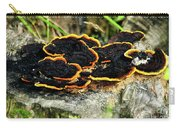 Wild Mushrooms Growing On Tree Trunk Carry-all Pouch