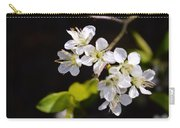 Wild Plum Blossom Carry-all Pouch