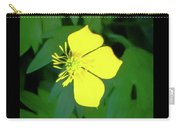 Small Sundrops Flower Carry-all Pouch