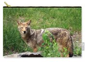 Wiley Coyote Carry-all Pouch