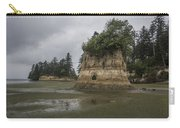 Willapa Bay Shoreline Carry-all Pouch