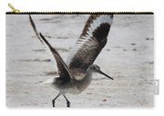 Willet Take-off Carry-all Pouch