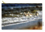 Willets In The Waves Carry-all Pouch
