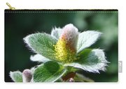 Willow Flower Carry-all Pouch